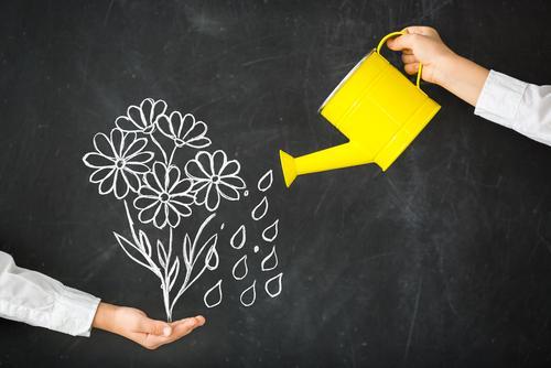 nurturing-culture-optimized