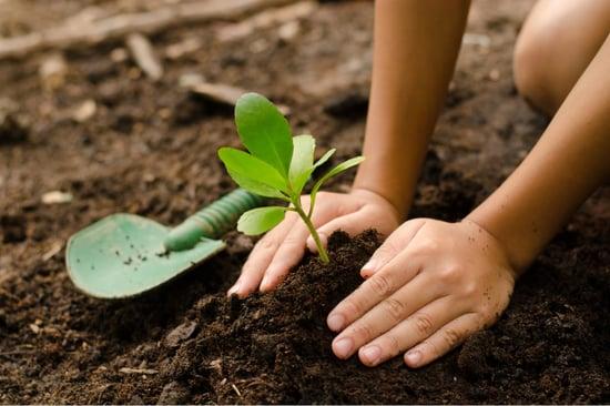 environment-ready-change