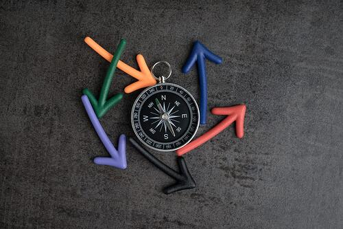 finding-north-star-company-purpose-matters