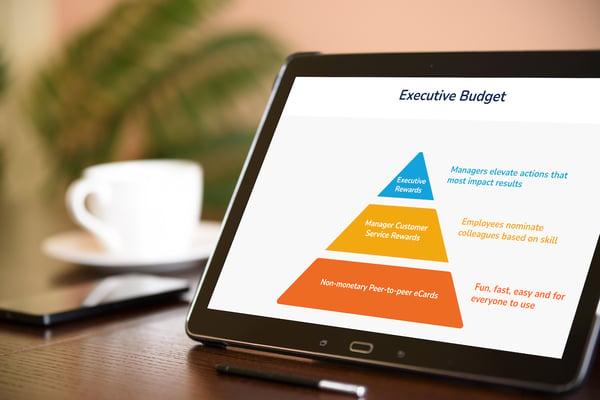 executive-budget-pyramid-mockup