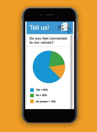 employee surveys example